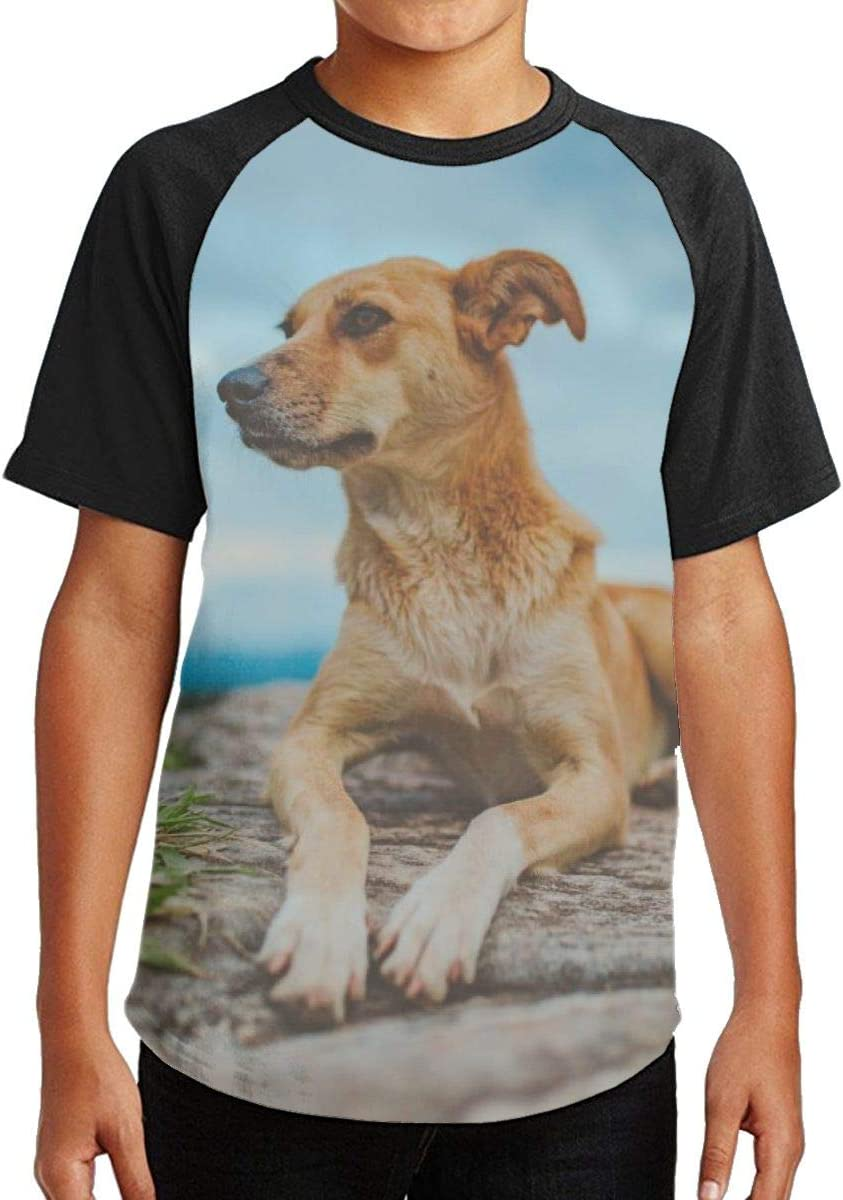 Nature Dog View Youth Kids T Shirt 3D Printed Short Sleeve Crew Neck Tees Shirts for Boys Children