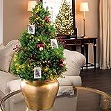 Amazon.com : Jackson & Perkins Woodland Deer Christmas Tree ...