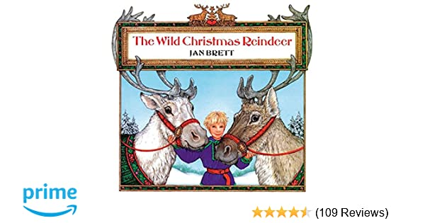 Name A Animal You Might See On A Christmas Card.The Wild Christmas Reindeer Jan Brett 9780698116528