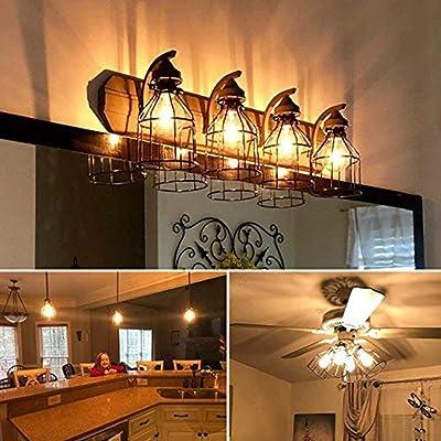 Buy Kohree Metal Bulb Guard Lamp Cage For Pendant Light Lamp Holder Ceiling Fan Light Bulb Covers Vintage Open Style Industrial Grade Adjustable 4 Packs Cage Only Online In Vietnam B07ckpvk9l