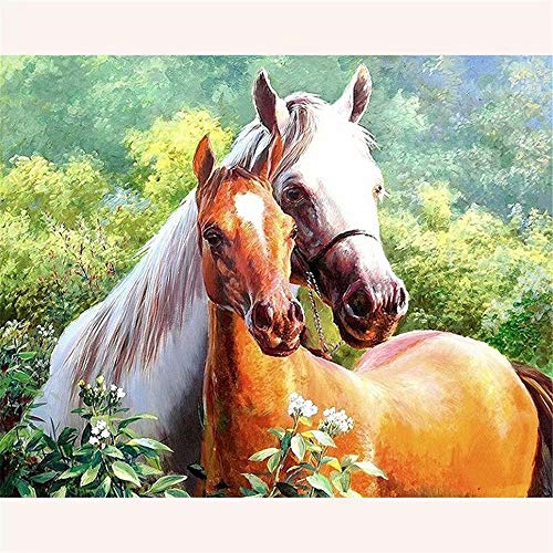 Diy 5D Diamond Painting by Number Kit, Full Drill Forest Horse?Rhinestone Arts Craft Canvas Wall Decor (9.8X11.8Inch)(Frameless)