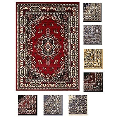 Traditional Area Rug Bordered Medallion Design Persian Oriental Rugs Carpet Runners