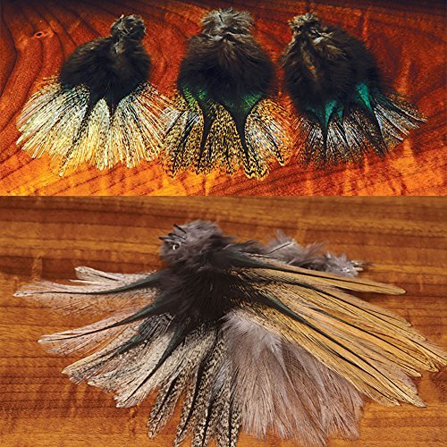 Coq De Leon Black Speckled (Corzuno) by Hareline