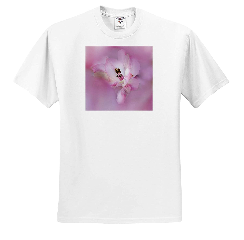 Flowers California ts/_314628 USA 3dRose Danita Delimont - Adult T-Shirt XL Alstroemeria Flower Close-up