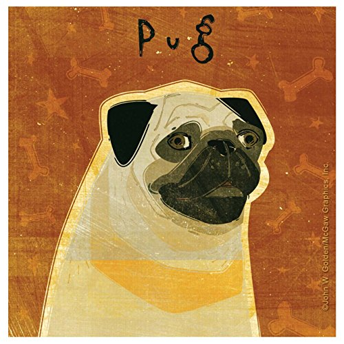 Pug Coaster (Thirstystone Occasions Coaster, Pug, Multicolor)