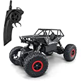 POBO RC Cars 1:18 Remote Control Off-Road Racing Vehicles 2.4GHz 4WD Radio Controlled Trucks High Speed Rock Crawler Electric Buggy (black)