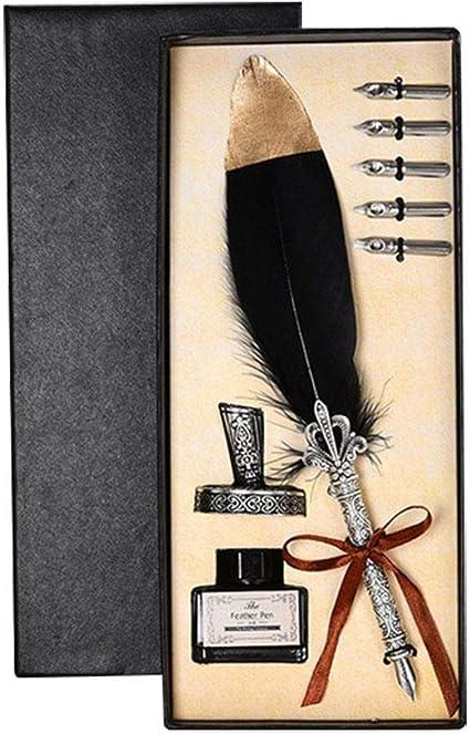 LAAT Set de plumas estilográficas Pluma de Escritura, estilo vintage, sin líquida para tintero, en caja, 28 * 11.5 * 4.8cm: Amazon.es: Oficina y papelería