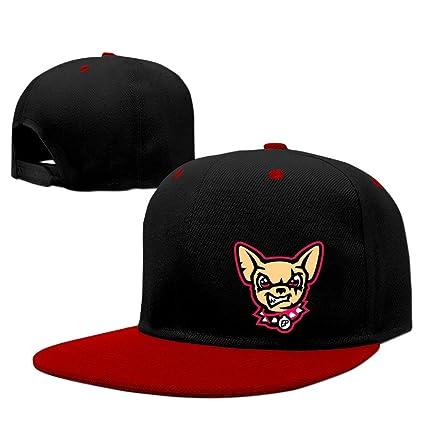 323efa5f07645 Amazon.com  Fitted Cotton Baseball Caps Hat 2016 MiLB Baseball El ...