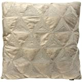 Sydney by Artistic Linen Embroidered Decorative Throw Pillow Pair Soft Velvet Plush Fabric (2 Pack),