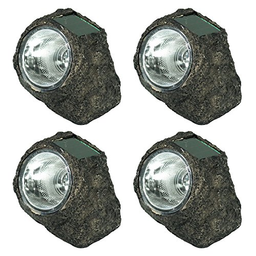 Led Garden Rock Light in Florida - 3