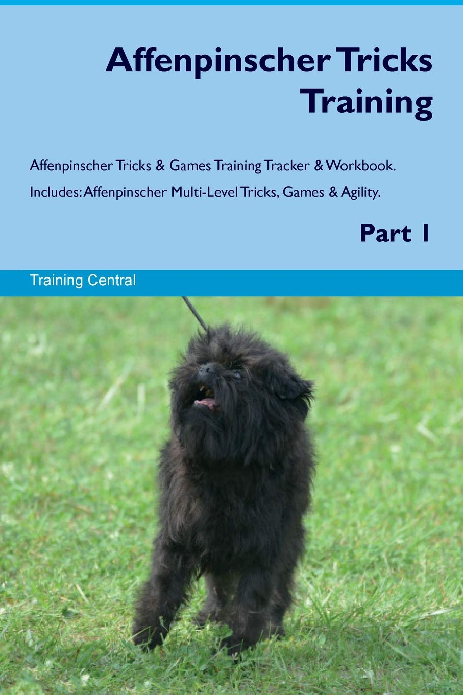 Affenpinscher Tricks Training Affenpinscher Tricks & Games Training Tracker & Workbook. Includes: Affenpinscher Multi-Level Tricks, Games & Agility. Part 1 ebook