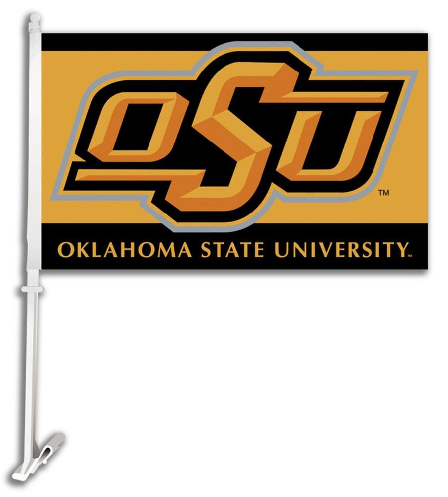 BSI College Car Flag