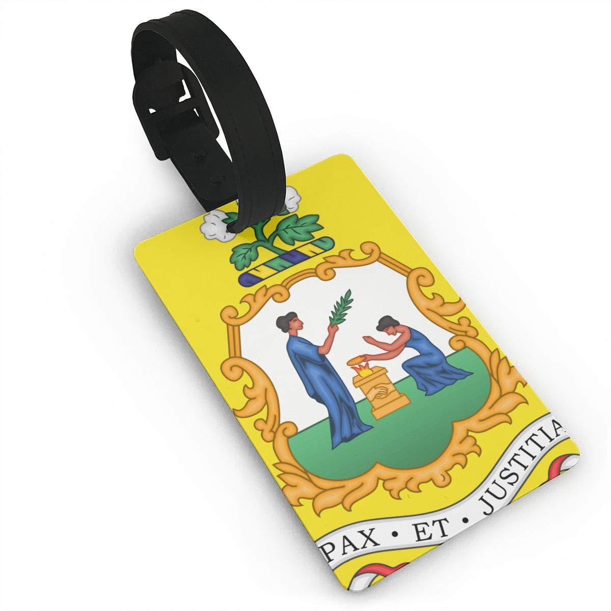 KODW12 Coat of Arms of Saint Vincent and The Grenadines Luggage Tag Travel Bag Labels Suitcase Bag Tag Name Address Cards