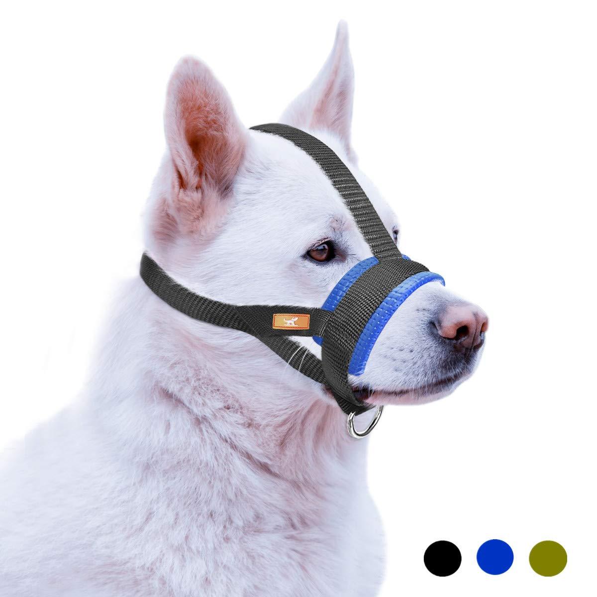 bozal para pitbull