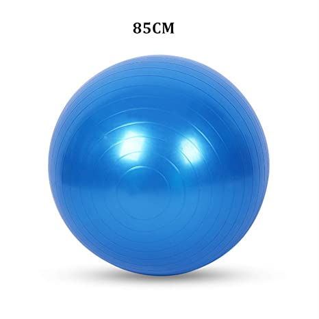 Amazon.com: Exercise Yoga Ball Sports Stability Balance Ball ...