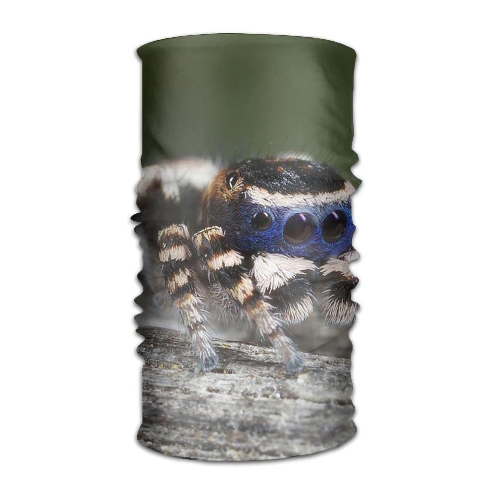 Owen Pullman Multifunctional Headwear Cute Spider Head Wrap Elastic Turban Sport Headband Outdoor Sweatband