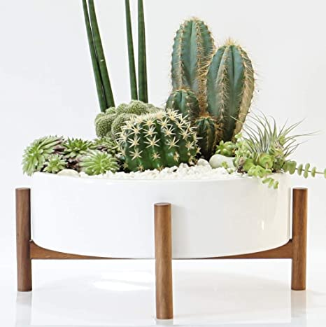 Mid Century Large Round Succulent Planter Bowl | 10 Inch White Ceramic Pot  With Wood Stand