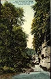 Deer Park Glen and Bridal Veil Falls in Distance and Stairs Leading into Glen Original Vintage Postcard