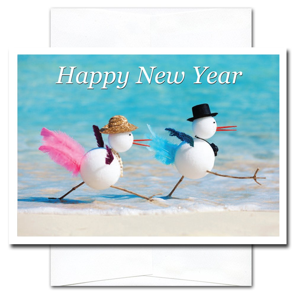 New Year Cards-Snowbirds 10 Cards & Env Professional or Personal Use Made in USA by CroninCards