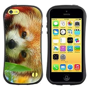 Suave TPU GEL Carcasa Funda Silicona Blando Estuche Caso de protección (para) Apple Iphone 5C / CECELL Phone case / / The Red Panda /
