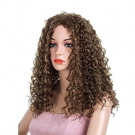 Ani·Lnc - Peluca de pelo sintético afro rizado de 2 colores para mujer negra
