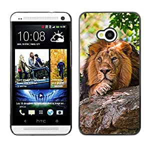 EJOY---Cubierta de la caja de protección la piel dura para el ** HTC One M7 ** --León pensativo