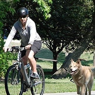Barra para llevar perro 6