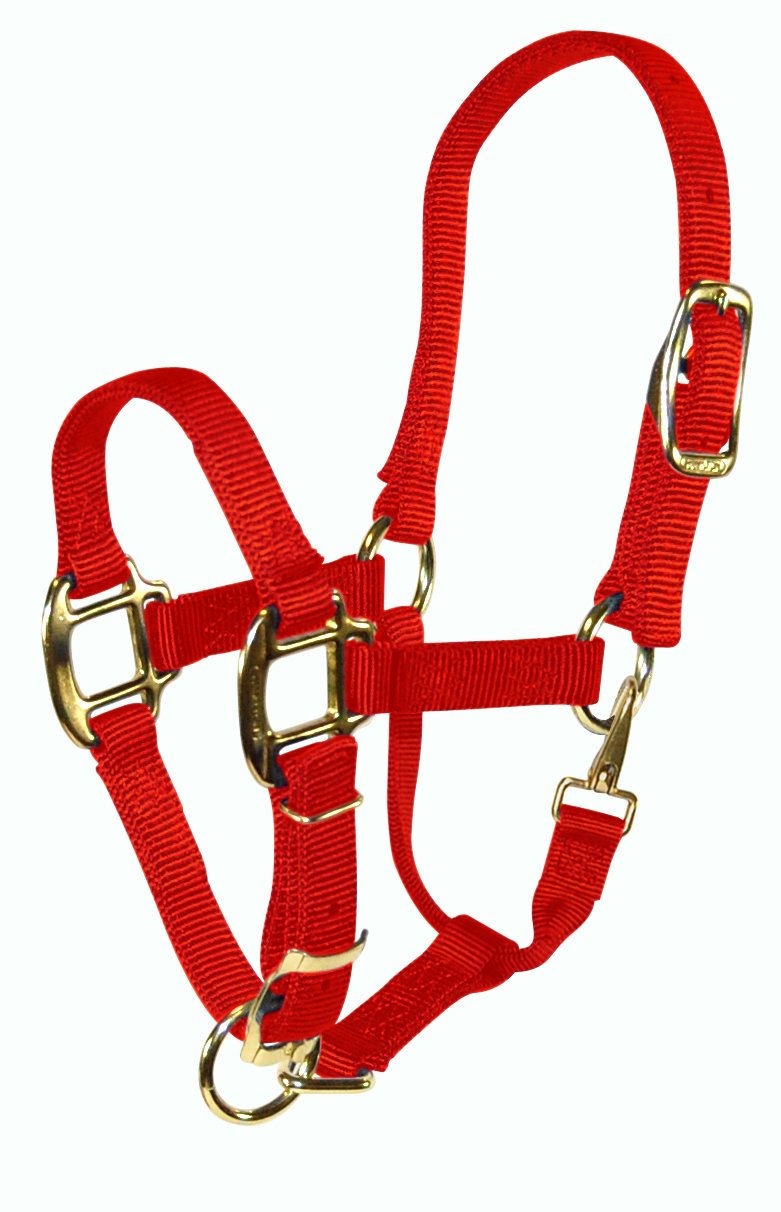 Hamilton 3QAS PORD 3 4 Adjustable Quality Pony Halter with Snap, red