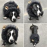 Dog Lion Mane, Lion Wig Dog Costume Dog Clothes Dress Adjustable Fancy Lion Hair for Medium to Large Sized Dogs for Festival Party Christmas Easter Gift (Black)