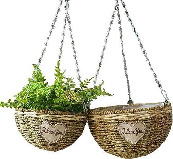 Planta colgando maceta 2 Pack de cesta de flores colgante hecho a ...