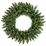 48'' Pre-Lit Camdon Fir Artificial Christmas Wreath - Multi Dura Lights