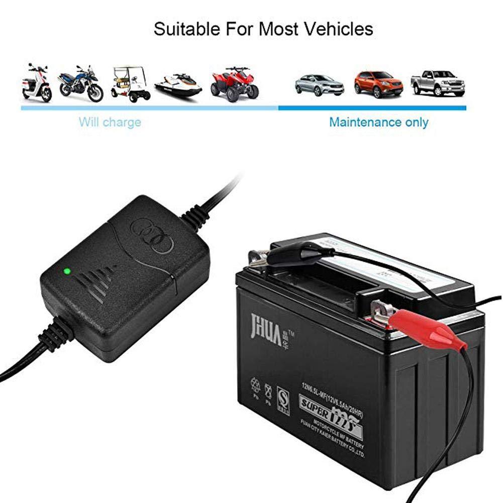 heresell Caricabatteria Auto mantenitore 12 V 1300 mA 3 Fasi Multi Protezioni Intelligente Automatico per batterie Piombo-Acido Auto Moto ATV
