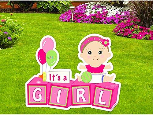 Girl Announcement Birth Stork (
