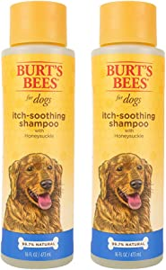 Burt's Bees For Dogs Natural Itch Soothing Shampoo and Spray with Honeysuckle | Anti-Itch Dog Shampoo and Spray, pH Balanced Anti Itch Dog Shampoo for All Dogs to Ease Irritation