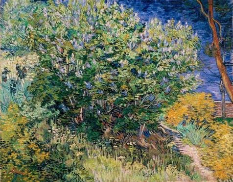 - High Quality Polyster Canvas ,the Best Price Art Decorative Prints On Canvas Of Oil Painting 'van Gogh Lilac Bush', 16x21 Inch / 41x52 Cm Is Best For Dining Room Artwork And Home Decor And Gifts