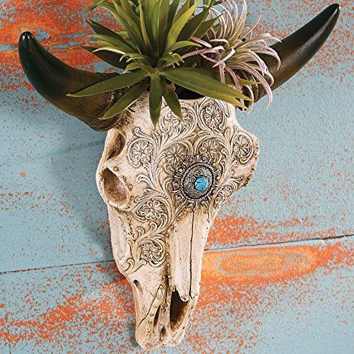 Ranch Style Bedspread (BLACK FOREST DECOR Steer Skull Wall Vase)