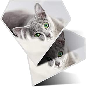 Awesome 2 x Diamond Stickers 7.5 cm - Russian Blue Cat Kitten Pet Fun Decals for Laptops,Tablets,Luggage,Scrap Booking,Fridges,Cool Gift #2605