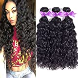 8A Unprocessed Brazilian Virgin Hair Water Wave 3PCS 14 16 18 inches Brazilian Hair Natural Weave Human Hair Extensions Natural Color, Total 300g Review