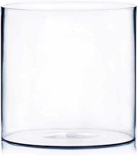 Amazon Com Wgv Cylinder Vase Width 12 Height 12 Clear Wide Large Diameter Glassware Floral Container Planter Terrarium For Wedding Party Event Home Office Decor 1 Piece Home Kitchen