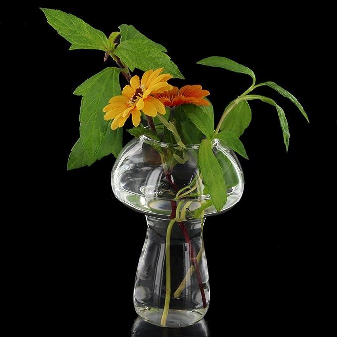 Claro Botella Florero De Cristal Para Las Decoraciones De Flores De Plantas - Setas: Amazon.es: Hogar