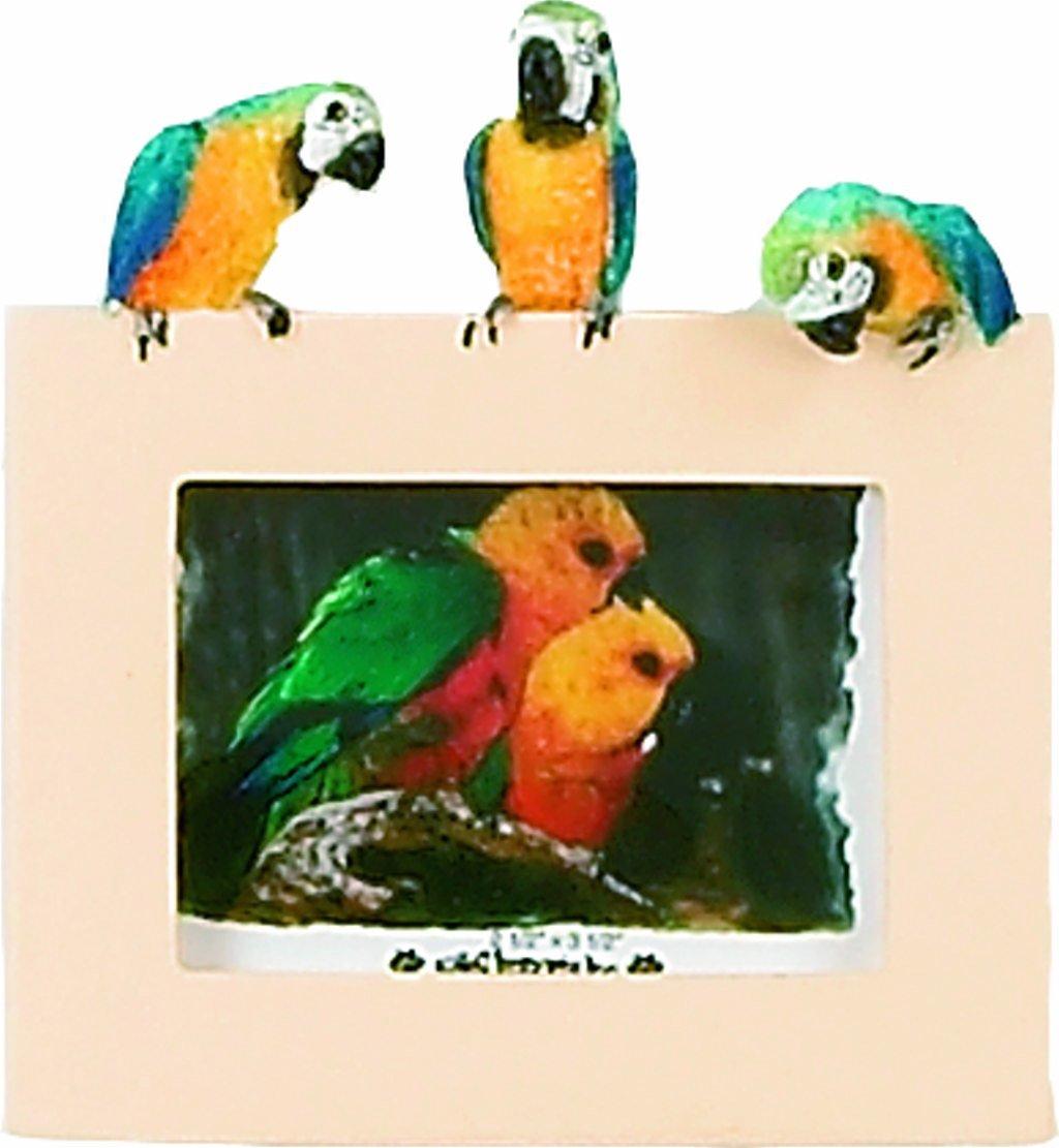 E&S Pets 35316-13 Small Bird Frames