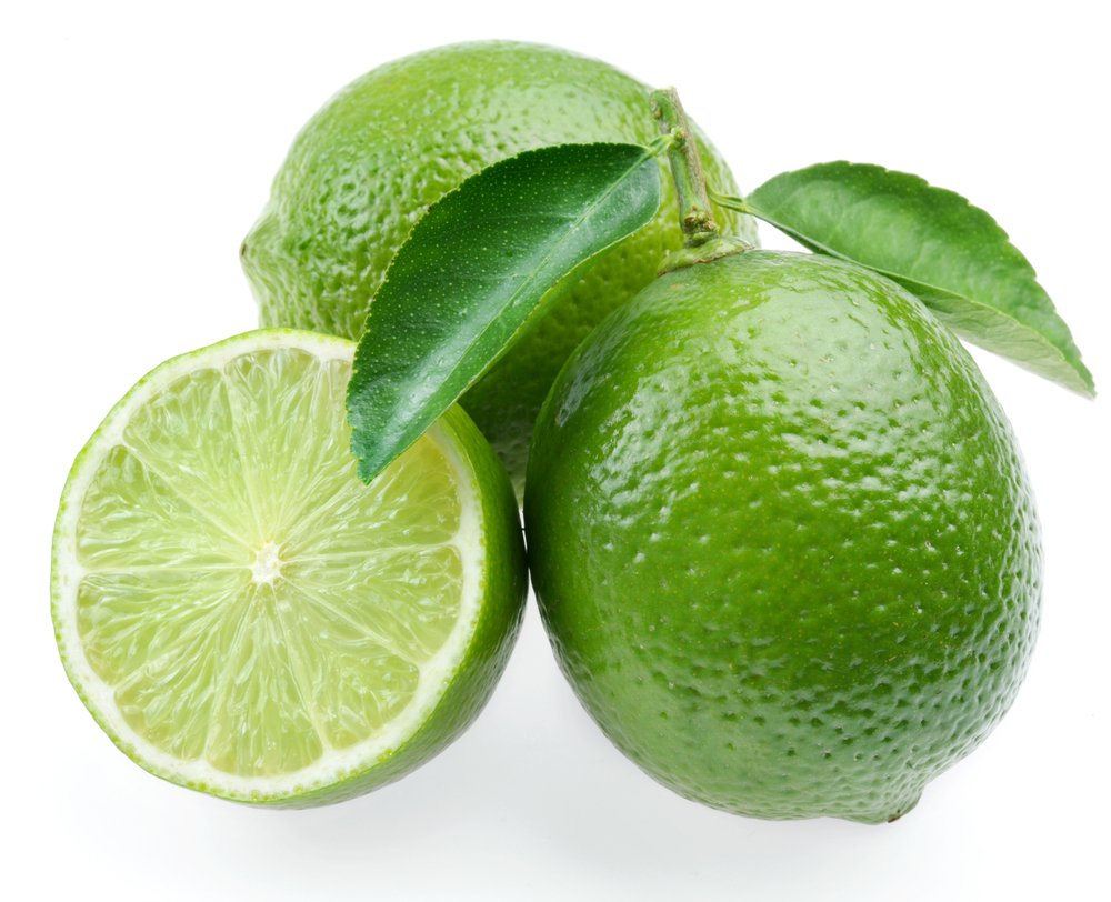 Persian Lime Tree - Fruit Bearing Size -8'' Pot-NO Ship to TX, FL, AZ, CA, LA, HI by Hirt's Gardens (Image #2)