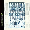 The Wonder-Working God: Seeing the Glory of Jesus in His Miracles Audiobook by Jared C. Wilson Narrated by Jared C. Wilson