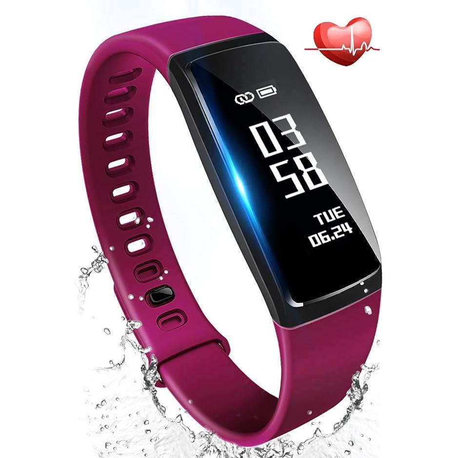 スピンはっきりしない本体Fitbit Flex2 フィットネストラッカー Black L/Sサイズ [日本正規品] FB403BK-JPN