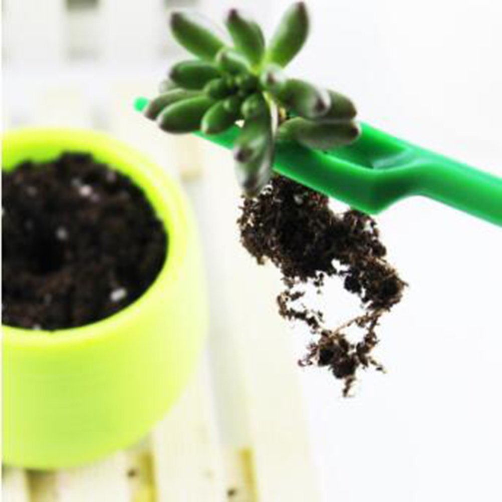 Jaune + Vert ounona plastique Plantoir 06243/Ensemble plantes succulentes semoir en bois Kit de germe de multiplication Outils de jardinage 2pcs