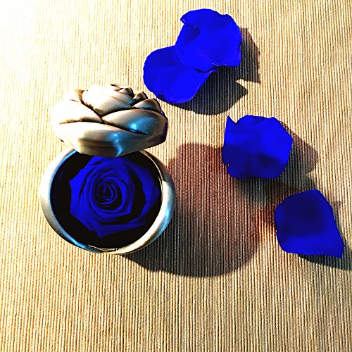 Handmade Preserved Flower Rose, Never Withered Roses, Upscale Immortal Flowers, Fresh Roses, Eernal Life Flowers for Love Ones, Gift for Valentine's Day, Anniversary, Birthday (Blue Rose)