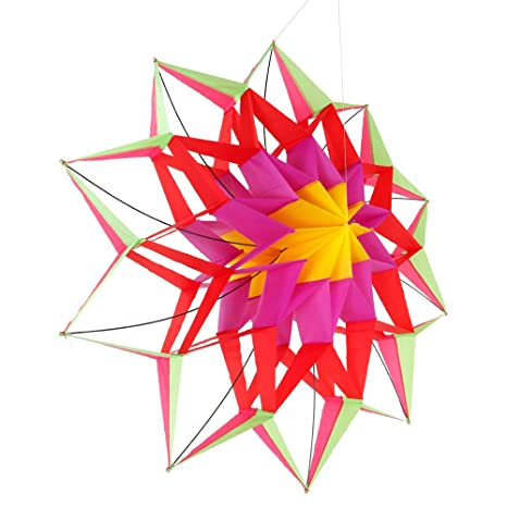 Amazon 60 3d lotus flower kite single line outdoor toy flying 60quot 3d lotus flower kite single line outdoor toy flying for kids sport mightylinksfo
