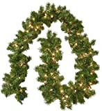 General Foam Plastics Pre-Lit Branch Garland + Clear Lights (Small Image)
