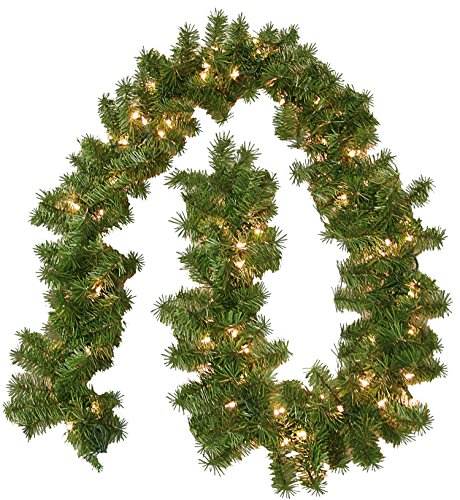General Foam Plastics Pre-Lit Branch Garland + Clear Lights (Large Image)