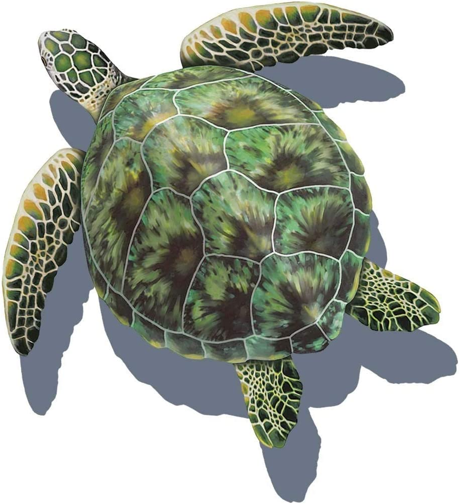 - Amazon.com : Sea Turtle Porcelain Swimming Pool Mosaic (26